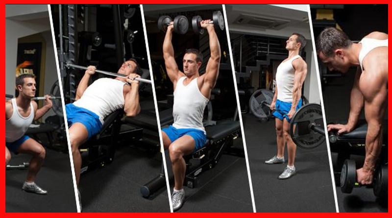 ejercicios según tipo cuerpo
