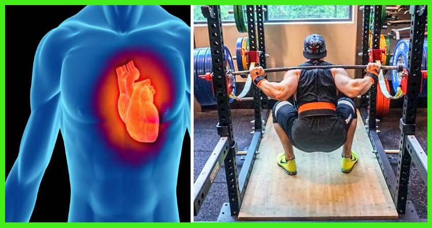 ¿las pesas son buenas o malas para tu corazón? - De Fitness