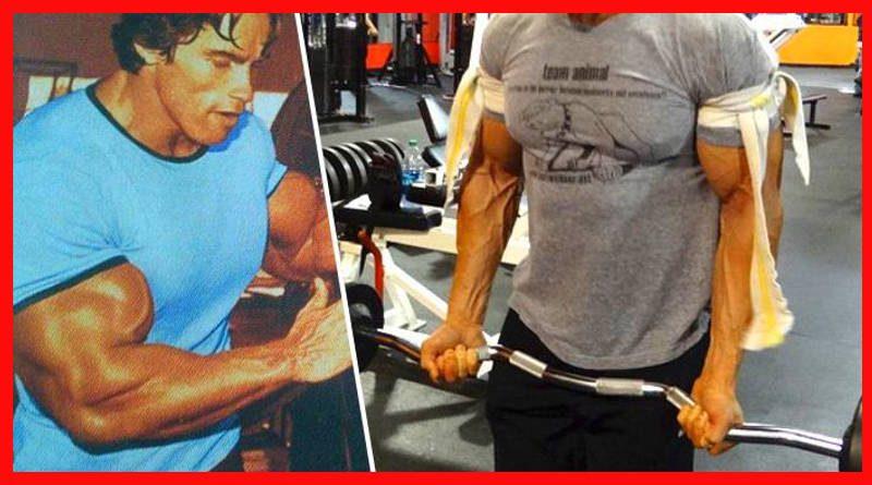 Cómo aumentar el tamaño de los bíceps
