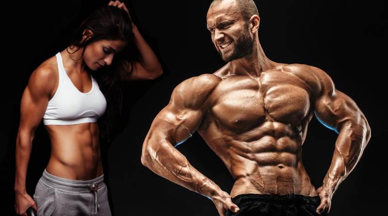 Perder grasa y ganar músculo a la vez